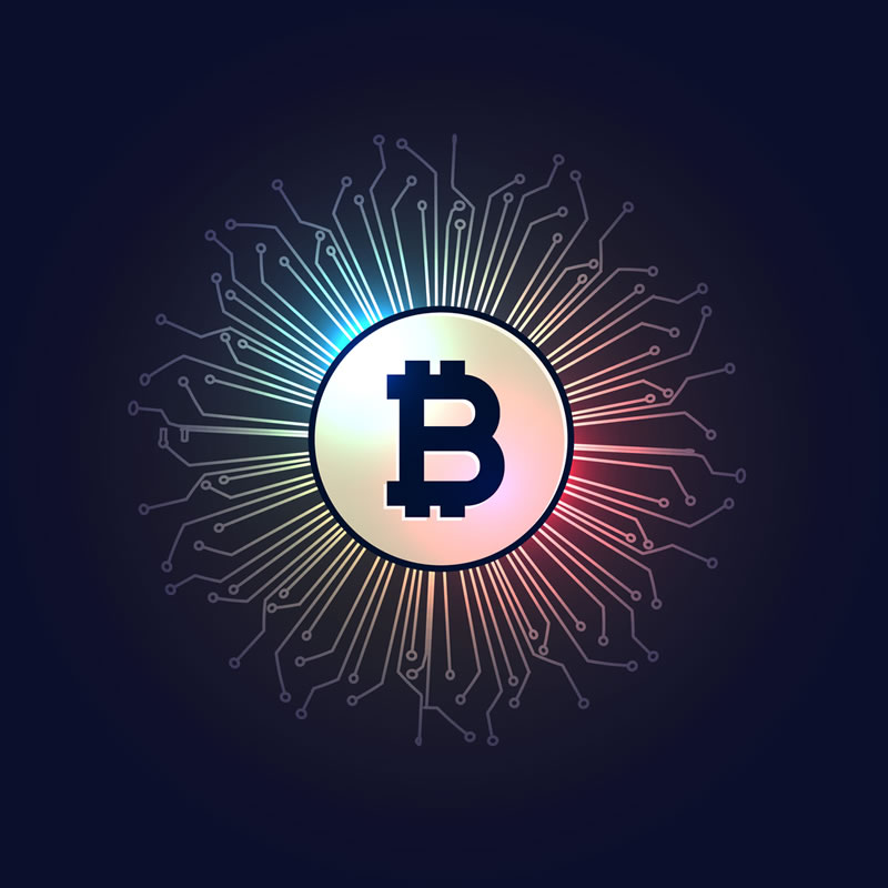 Bitcoin Exchange Revealed as Top Contributor to Biden