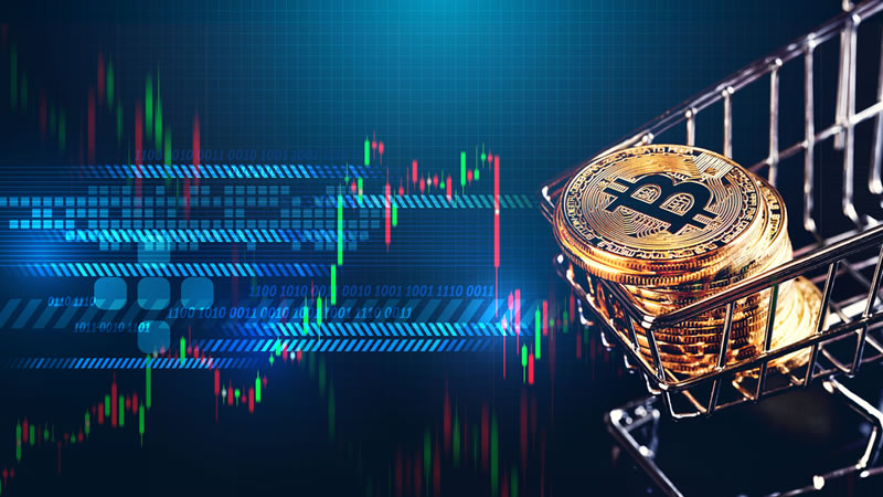 Here's Why Crypto Analysts Are Divided Over The Future Of Altcoins – news.kuaidiantou.vip