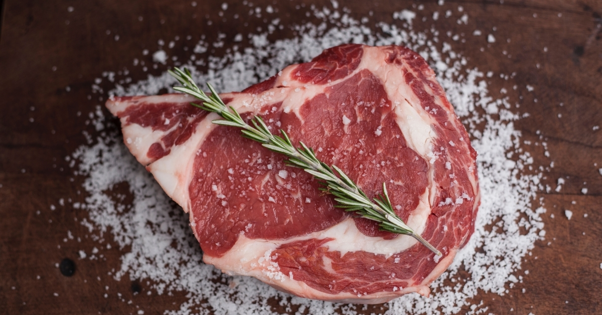 Bitcoin's Carnivore Cult Is Both Stupid and Correct