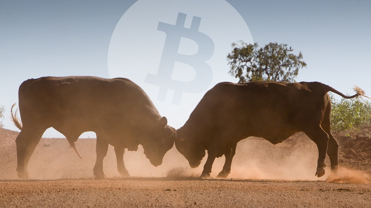 Despite Stock Market Disaster Predictions, Bitcoin Markets Permeate Bullish Signals | Market Updates Bitcoin News